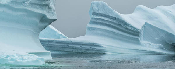 Wall Art - Photograph - Icebergs In The Southern Ocean, Iceberg by Panoramic Images
