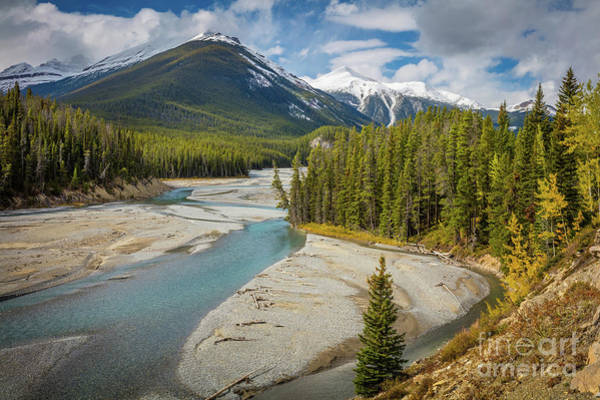 Canadian Rockies Wall Art - Photograph - Icefields Parkway Delta by Inge Johnsson