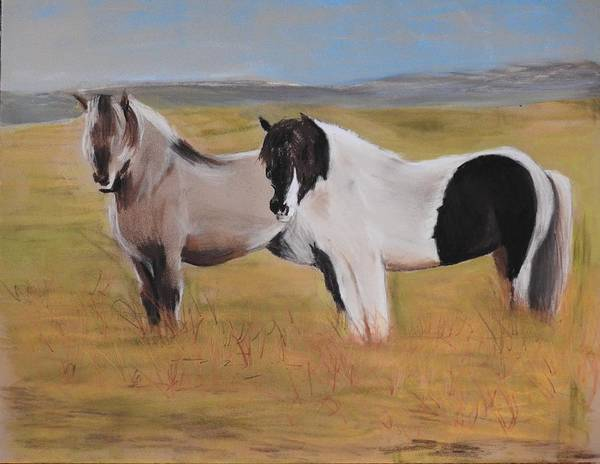 Wall Art - Pastel - Iceland Ponies by Betty-Anne McDonald
