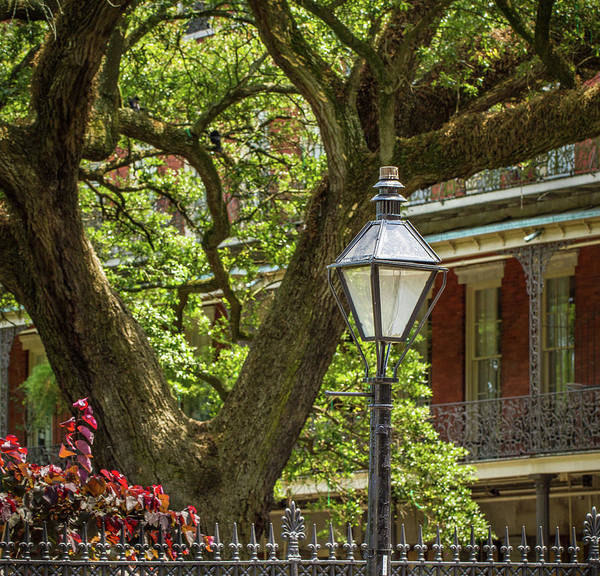 Photograph - Iconic New Orleans by Jean Noren