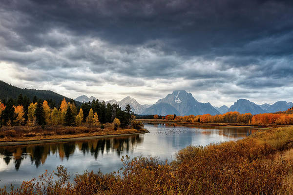 Photograph - Iconic Oxbow Bend Sunrise by Wes and Dotty Weber