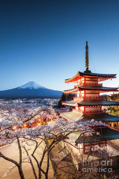 Wall Art - Photograph - Iconic Pagoda During Cherry Blossom Season, Japan by Matteo Colombo