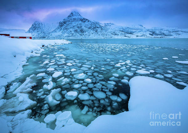 Wall Art - Photograph - Icy Pool by Inge Johnsson