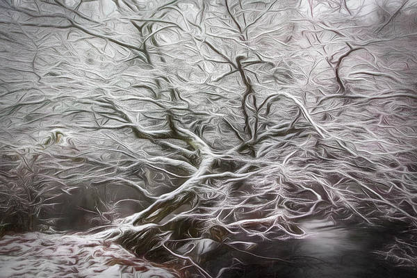 Photograph - Icy Waves Of Inspiration by Debra and Dave Vanderlaan