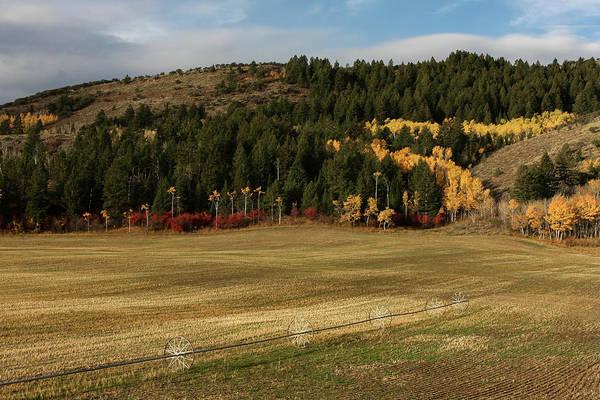 Photograph - Idaho Fall by Ronnie and Frances Howard
