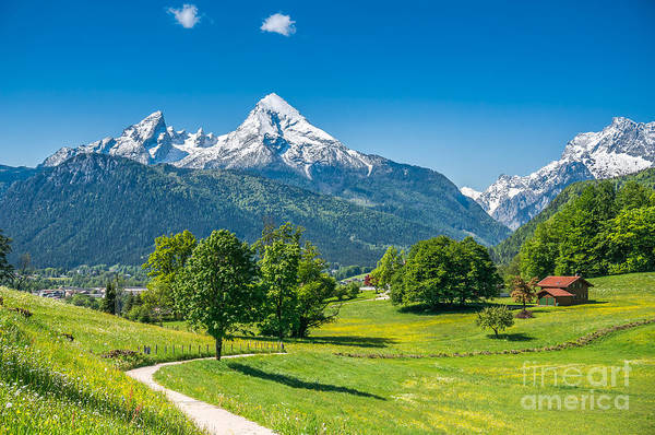 Wall Art - Photograph - Idyllic Summer Landscape In The Alps by Canadastock