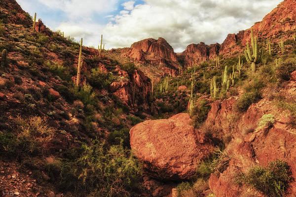 Photograph - If Rocks Could Talk by Rick Furmanek