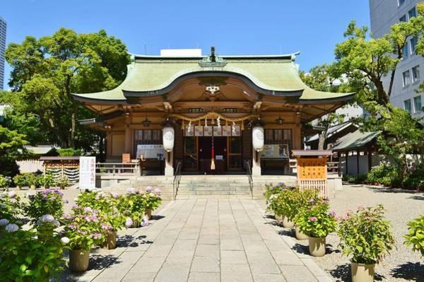 Kansai Painting - Ikasuri-jinja, Haiden - Ikasuri Zama Shrine, Chuo, Osaka, Japan 2 by Celestial Images