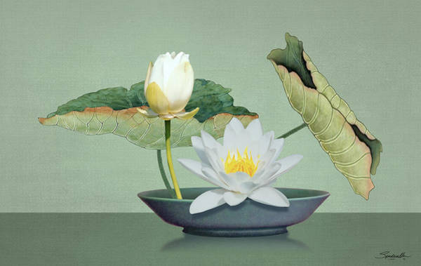 Wall Art - Digital Art - Ikebana And Lotus Flower by Spadecaller