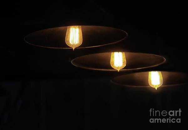 Photograph - Illuminating Trio by Karen Adams