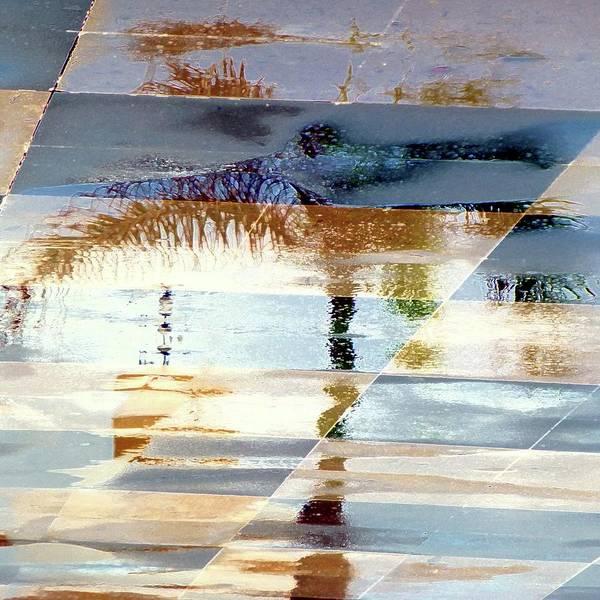 Wall Art - Photograph - Illusory Palm Reflection by Barbie Corbett-Newmin