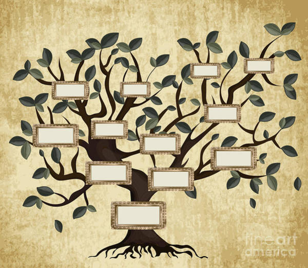 Title Digital Art - Illustration Of Family Tree On Aged by Gordana Simic