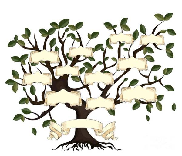 Title Digital Art - Illustration Of Family Tree With by Gordana Simic