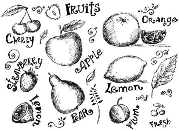 Pencil Drawing Digital Art - Illustrations Of Various Fruits And by Kalistratova