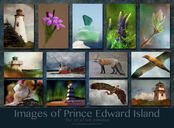Photograph - Images Of Prince Edward Island 2 by WB Johnston