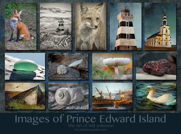 Photograph - Images Of Prince Edward Island by WB Johnston