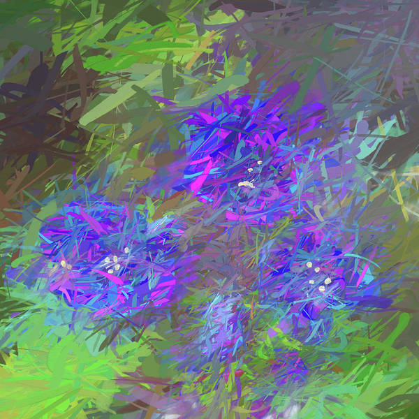 Wall Art - Mixed Media - Impressions Of Phacelia by Peter Tellone
