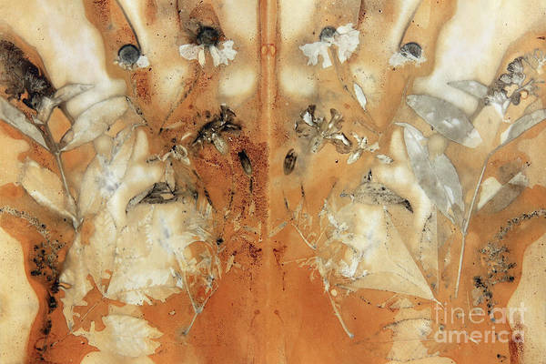 Wall Art - Mixed Media - Imprint Of The Leaves And Plants by Michal Boubin