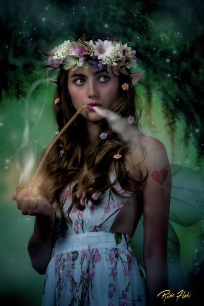 Photograph - Impudent Fairy by Rikk Flohr
