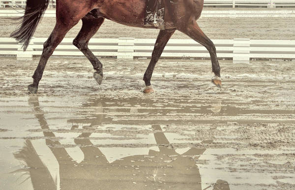 Photograph - Impulsion Mirrored by JAMART Photography