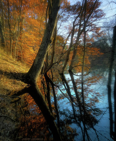 New England Photograph - In Arcadia by Jerry LoFaro
