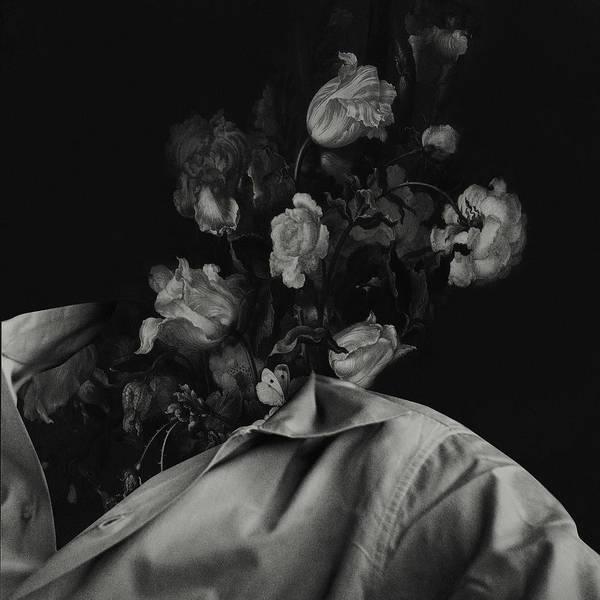 Wall Art - Digital Art - In Bloom I by Fran Rodriguez