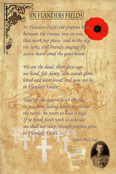 Photograph - In Flanders Fields by Andrew Fare