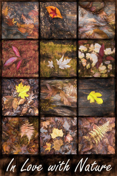 Photograph - In Love With Nature Art In Masculine Tones by Debra and Dave Vanderlaan