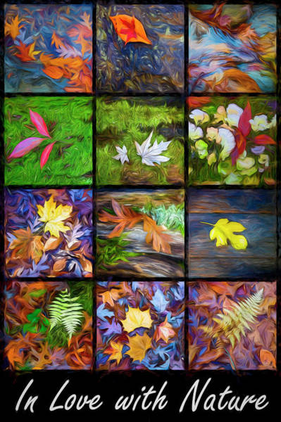 Photograph - In Love With Nature Painting by Debra and Dave Vanderlaan