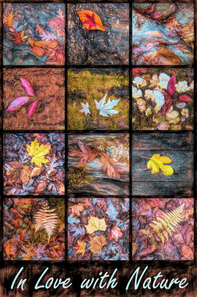 Photograph - In Love With Painted Nature by Debra and Dave Vanderlaan