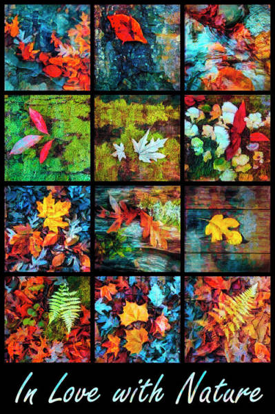 Photograph - In Love With The Colors Of Nature by Debra and Dave Vanderlaan