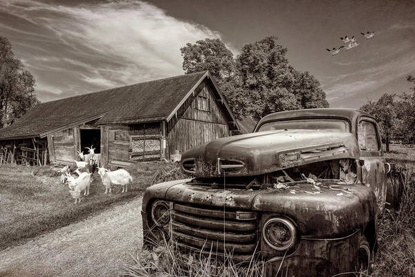 Photograph - In Love With Vintage Sepia Tones by Debra and Dave Vanderlaan
