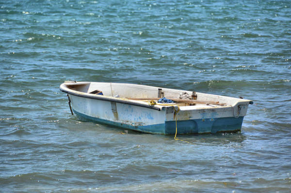Photograph - In Need Of A Fisherman by JAMART Photography