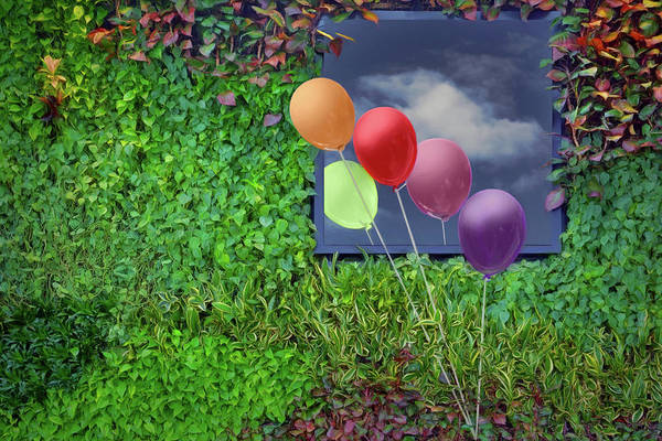 Wall Art - Photograph - In Passing - Balloons - Window by Nikolyn McDonald