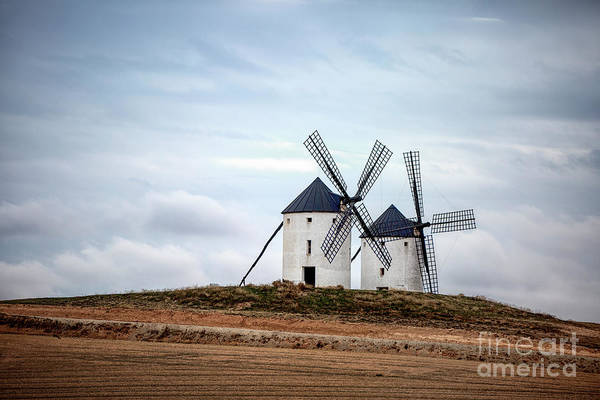 Wall Art - Photograph - In The Arms Of The Wind by Evelina Kremsdorf