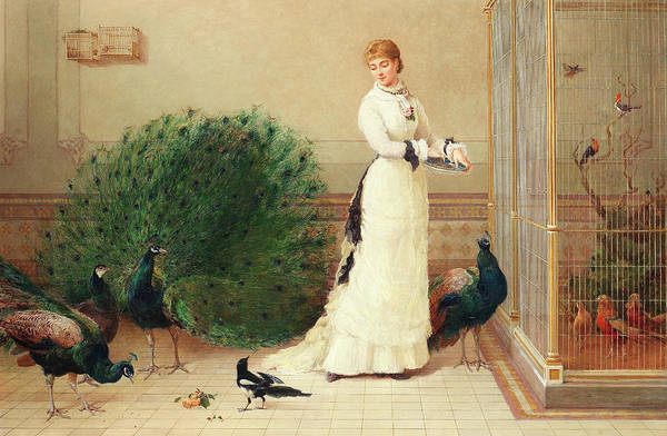 White Peacock Painting - In The Aviary by Heywood Hardy