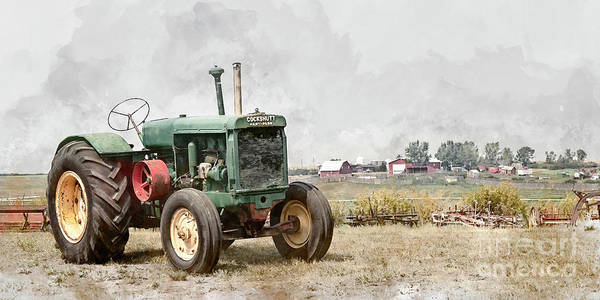Photograph - In The Field by Brad Allen Fine Art