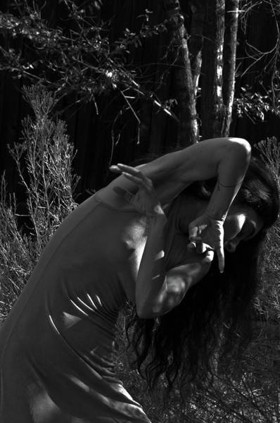 Photograph - In The Garden by Catherine Sobredo