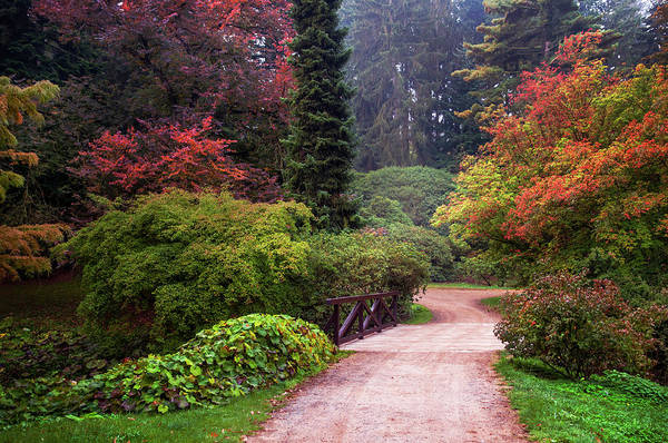 Photograph - In The Heart Of Arboretum. Pruhonice. Prague by Jenny Rainbow