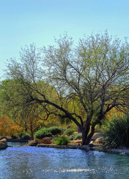 Wall Art - Photograph - In The Park by Gordon Beck