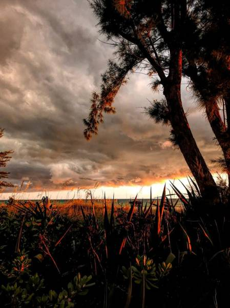 Photograph - In The Shadows Of The Storm by Robert Stanhope