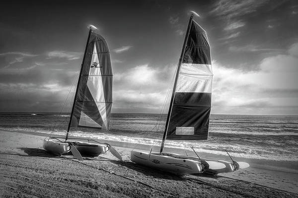 Wall Art - Photograph - In The Wind Black And White by Debra and Dave Vanderlaan