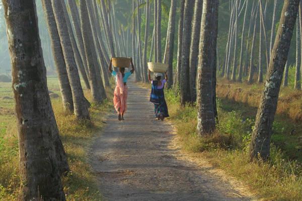 Side-by-side Photograph - India, Goa, Two Women Walking Along by Art Wolfe