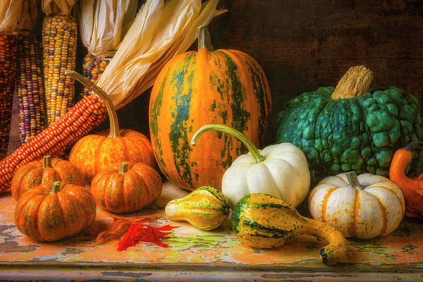 Wall Art - Photograph - Indian Corn, Pumpkins And Gourds by Garry Gay