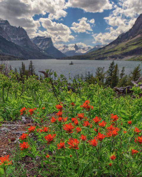 Photograph - Indian Paintbrush At Saint Mary Lake by Kristen Wilkinson