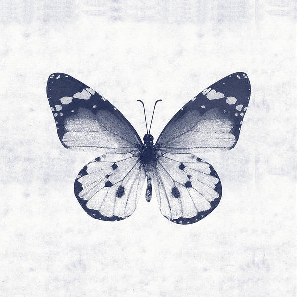 Wall Art - Mixed Media - Indigo And White Butterfly 1- Art By Linda Woods by Linda Woods