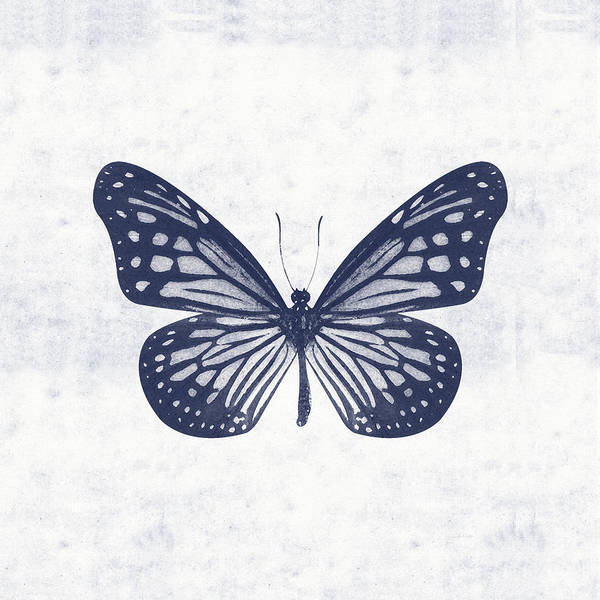 Wall Art - Mixed Media - Indigo And White Butterfly 2- Art By Linda Woods by Linda Woods