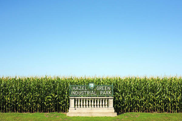 Wall Art - Photograph - Industrial Park Corn by Todd Klassy