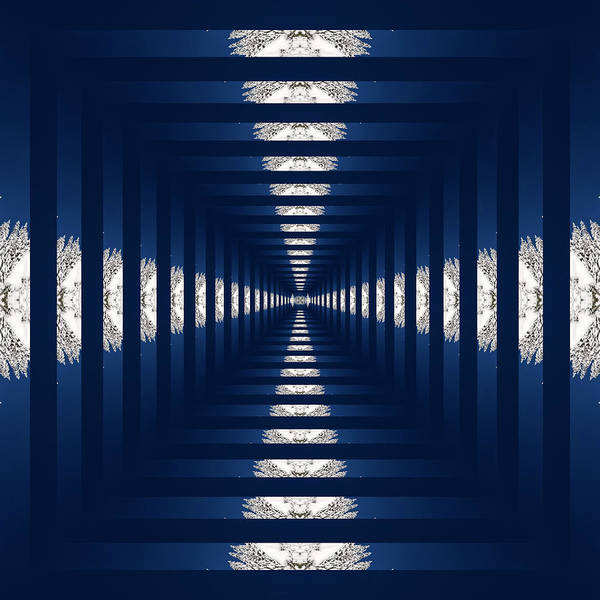Kaleidoscopes Photograph - Infinity Tunnel Snow Covered Trees Kaleidoscope by Pelo Blanco Photo