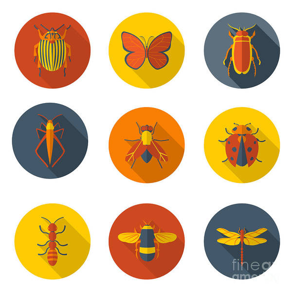 Wall Art - Digital Art - Insects Flat Icons by Sly Raccoon